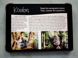 Koala Reading Passage Displayed on an iPad