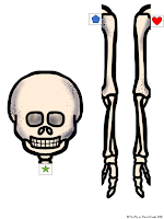 https://www.teacherspayteachers.com/Product/Skeletal-System-2476961
