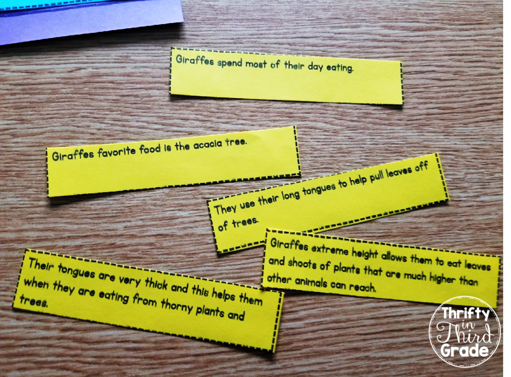 Sentences are mixed up and out of order. Students will read them all and think about how they are related.